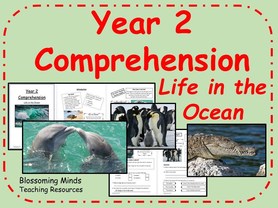 Year 2 Reading Comprehension - The Ocean (habitats)