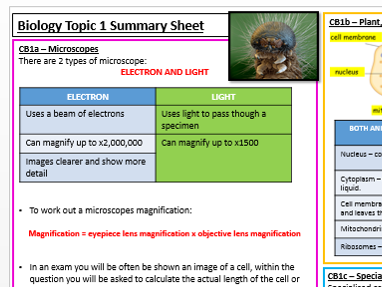 Edexcel Combined Science Biology Revision Summary Resources