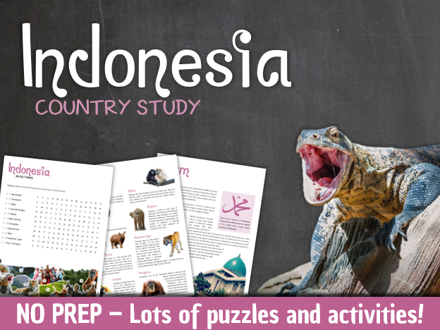 Indonesia (country study)