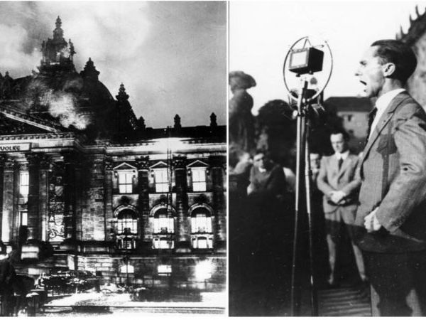 Reichstag's Fire-Enabling Act and The Night of the Long Knives - GCSE