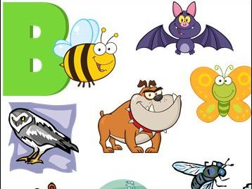 20 Animals that begin with the Letter B