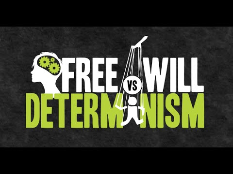 Freewill and Determinism A Level Revision Notes