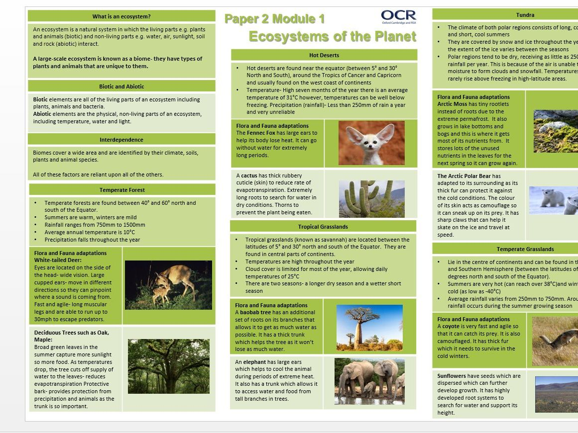 OCR A GCSE 9-1 Geography Paper 2 Knowledge Organiser Bundle