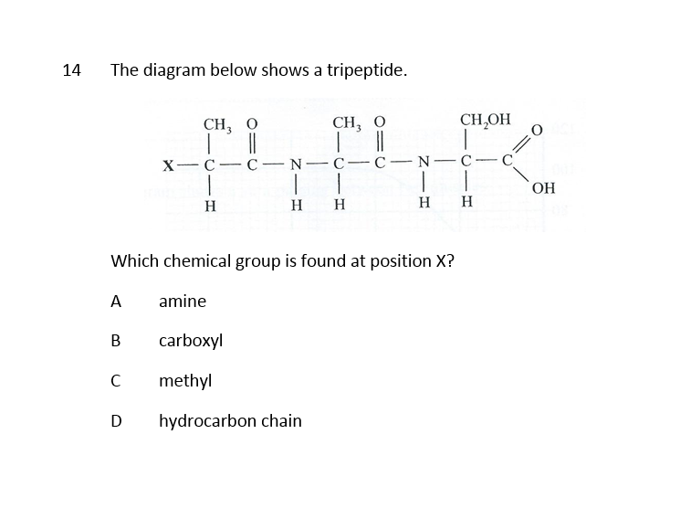 Biochemistry 3 Questions with Answers