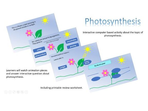 Interactive computer activity based on photosynthesis