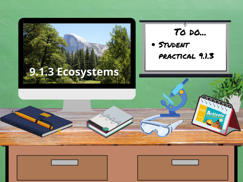 9.1.3 Ecosystems (AQA KS3 Activate 1)