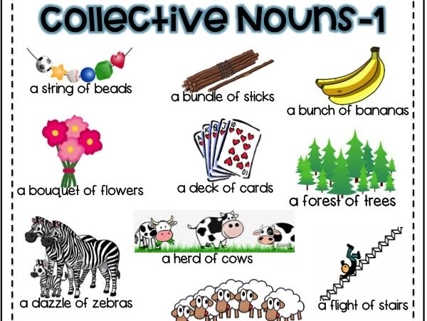 Collective Nouns Pack