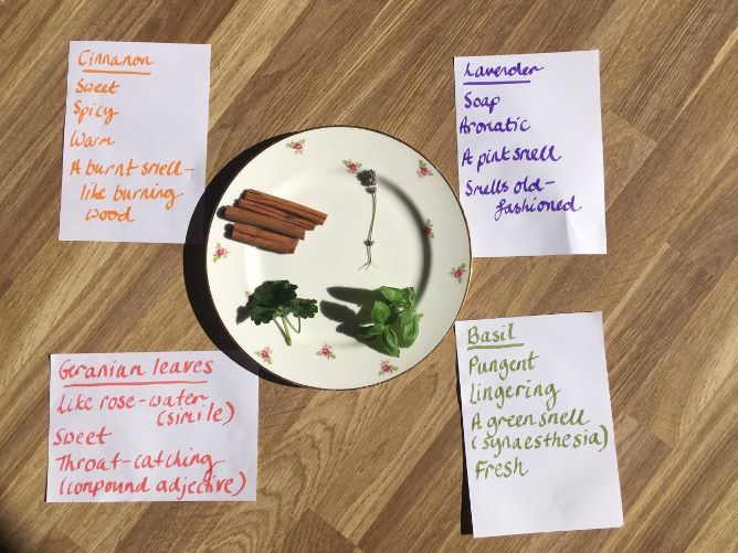 Active Home-Learning: Spelling and Descriptive Writing