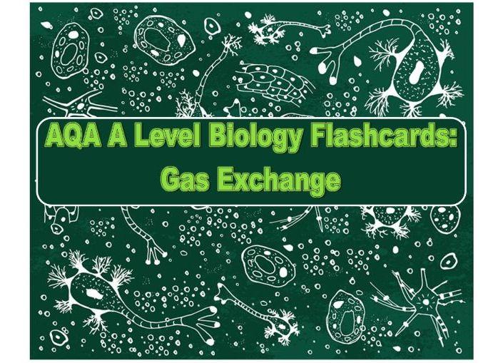 AQA Flashcards Gas Exchange A Level Biology