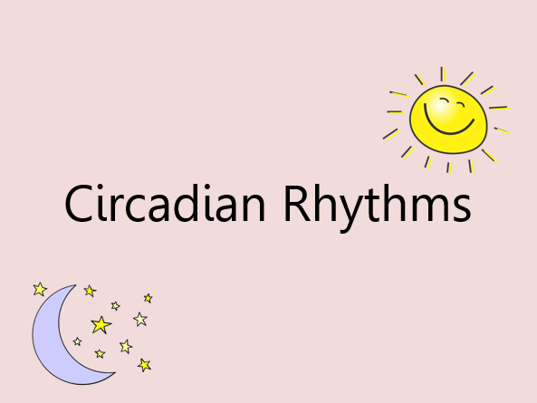 Circadian Rhythms (A2 Psychology)