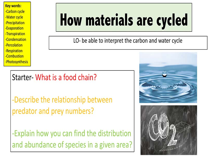 How materials are cycled (carbon cycle and water cycle)