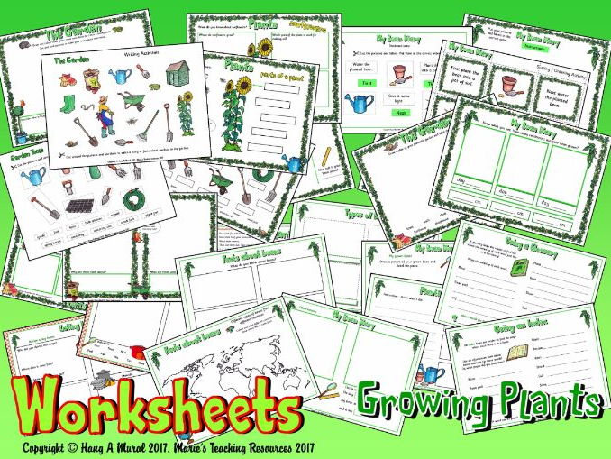 Growing Plants  – Worksheets