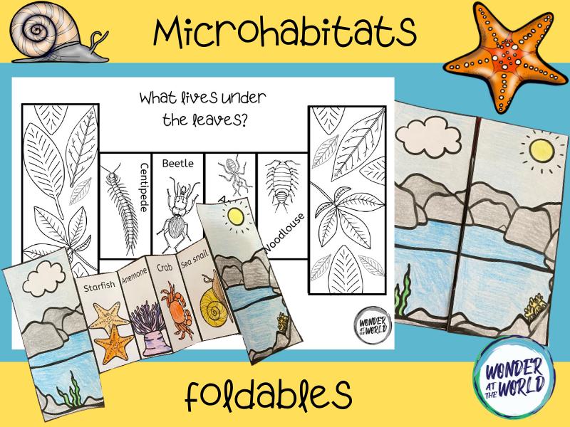 Microhabitat folding crafts KS1