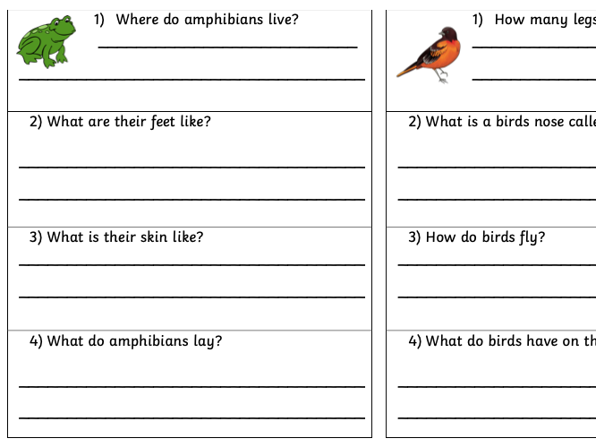 Animal Types Question Cards