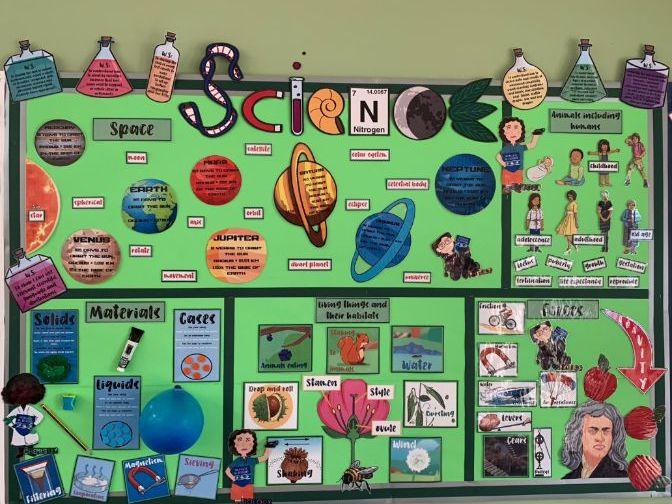 Year 5 Science Display