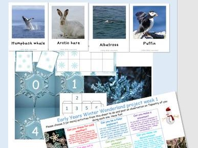 Early Years Winter  or Polar topic bundle