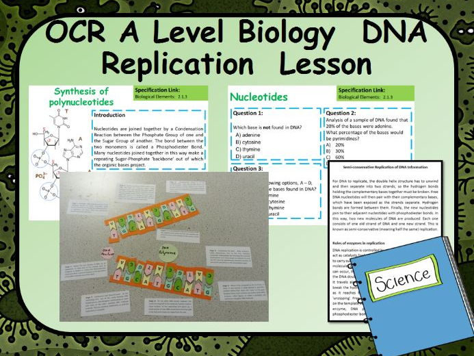 New OCR AS Biology DNA Replication Lesson