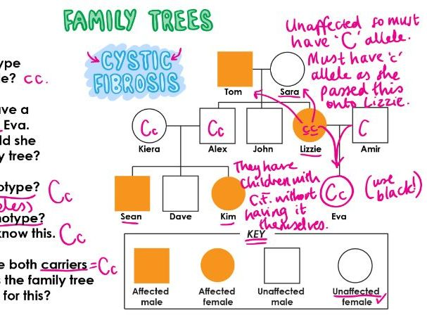 INHERITANCE - FAMILY TREES Revision Video GCSE 9-1 Bio & Combined Science - AQA