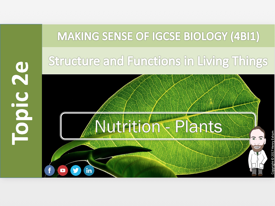IGCSE Biology 9-1 - 2e Nutrition - Flowering Plants