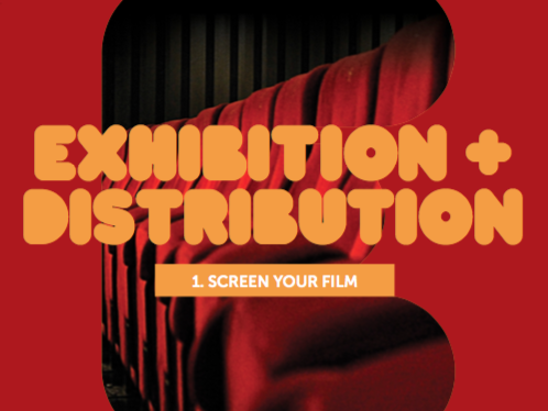 Exhibition & Distribution 1: Screen Your film