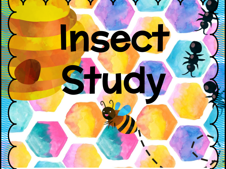 Insect Study - Evolution & Inheritance
