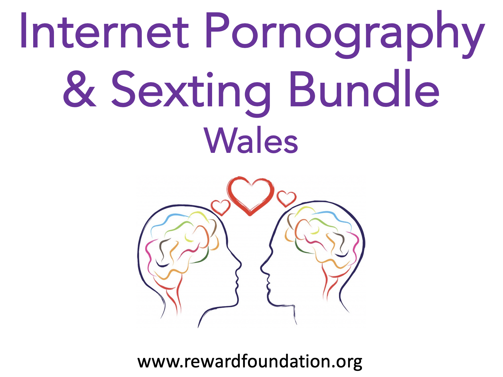 Internet Pornography and Sexting Bundle Wales