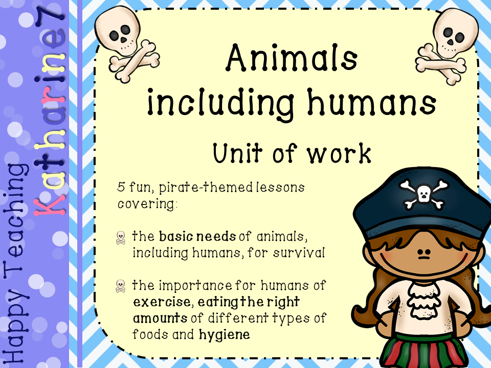 Science unit of work - animals including humans (pirate themed)