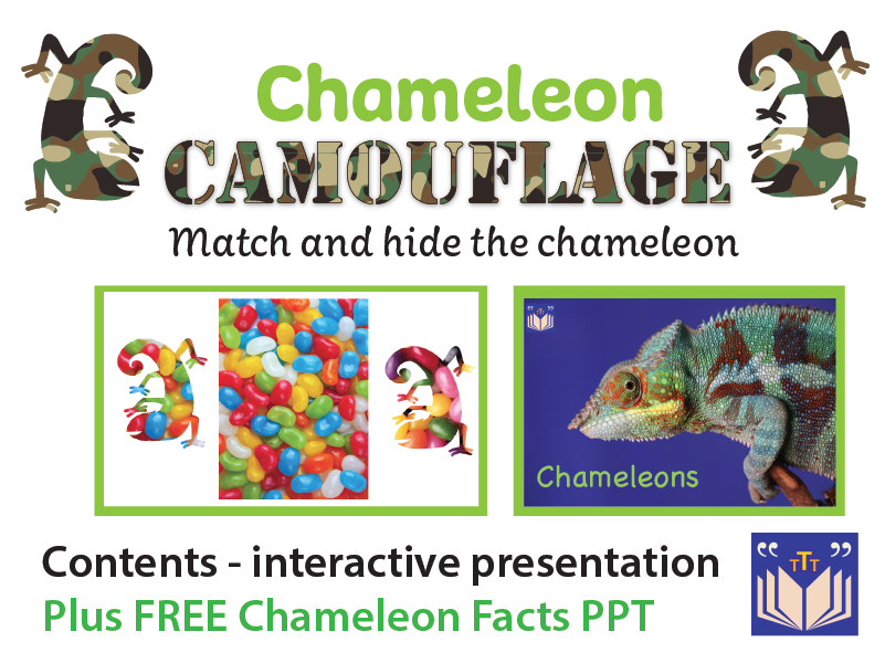 Chameleon Camouflage - interactive