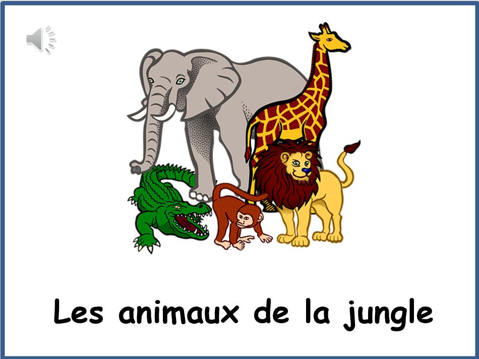 French Jungle Animals