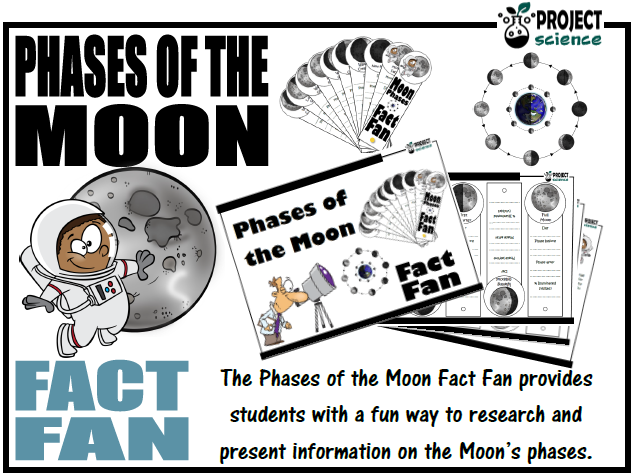 Phases of the Moon Fact Fan