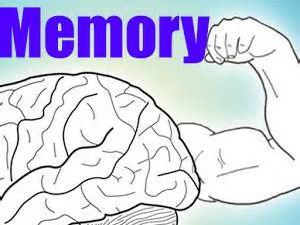 ESL Memory Test