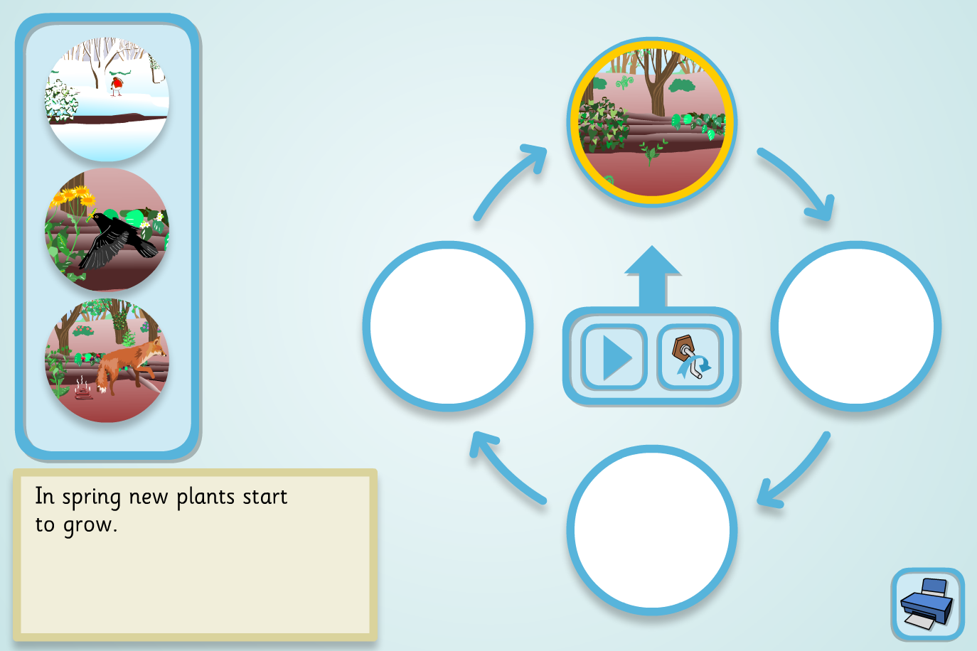 Woodland Food Cycle Sequencer (Simple) - KS2 Literacy