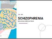 AQA Psychology Schizophrenia - Biological explanations (AO3)