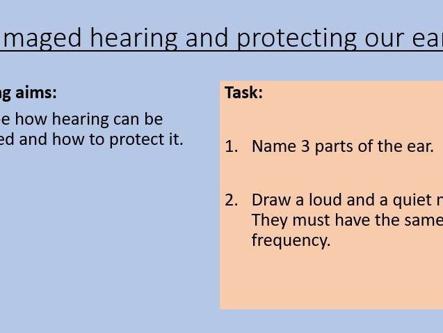 KS3 Damaged hearing and protecting our ears