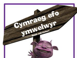 Visitors - Developing Progressive Incidental Welsh in the Primary School N to Y6 Booklet