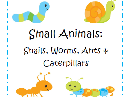 Small Animals: Graphic Organizers,Charts & Cards