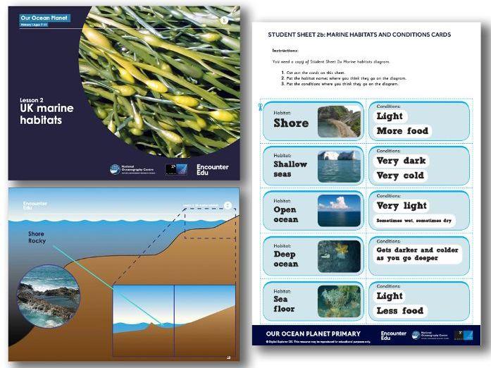 UK ocean habitats KS2 Science