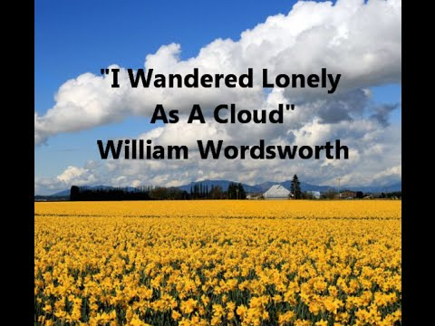 explication of i wandered lonely as A poetic analysis of william wordsworth's i wandered lonely as a cloud or daffodils a poetic analysis of william wordsworth's i wandered lonely as a cloud or daffodils written by jordan dickie - bestwordca, poetical works and analysis.