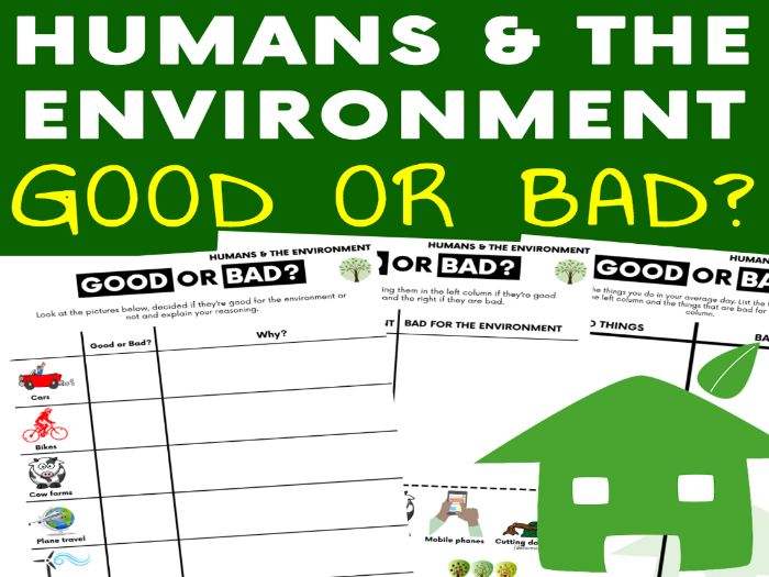 Humans and The Environment: Good or Bad Habits Activities