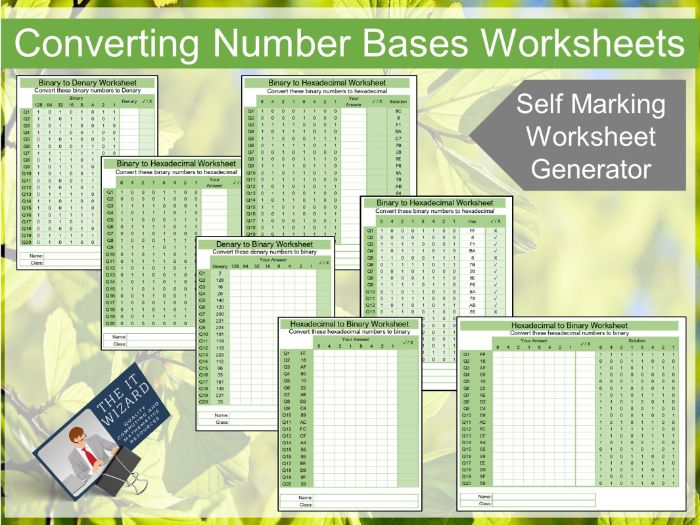 Binary and Hex Conversion Self Marking Worksheet Generator