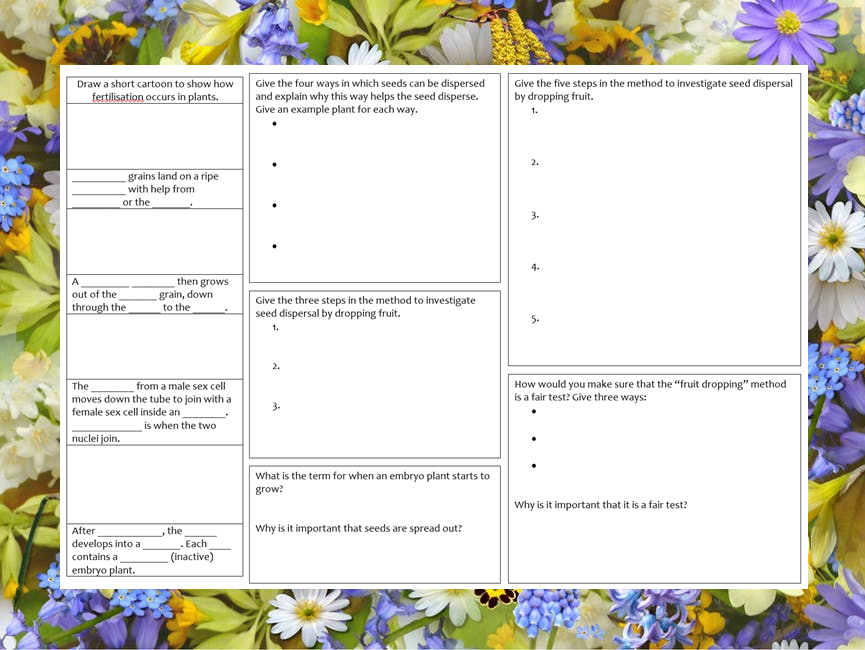 KS3 Plant fertilisation, seed formation and seed dispersal revision mat