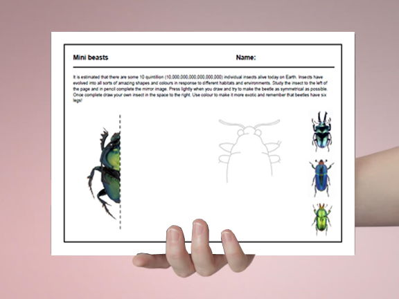 Art cover work / cover lesson - Mini beasts - 1hr activity