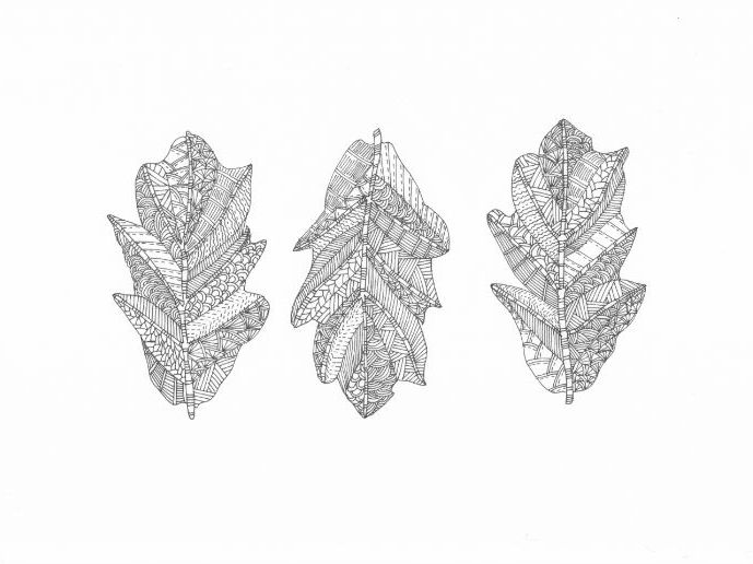 Three Leaves Colouring Page