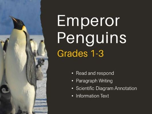 Emperor Penguins - Information Text and Classification