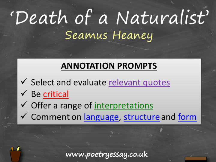 Seamus Heaney – 'Death of a Naturalist' – Annotation / Planning Table / Questions / Booklet