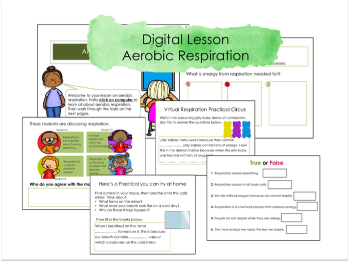 Aerobic respiration Google classroom Lesson and Activities