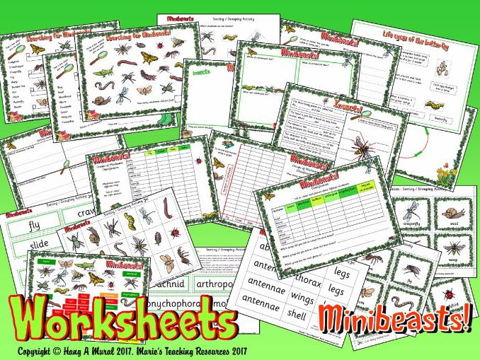 Minibeasts – Worksheets