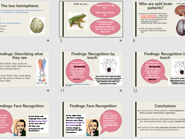 LATERALISATION & SPLIT BRAIN - Full Lesson (ppt & activities) - AQA Psychology Biopsychology Year 2