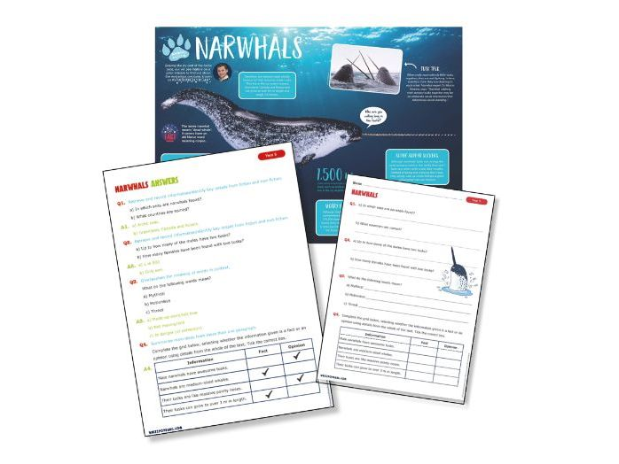 Yr5 reading science:Narwhals