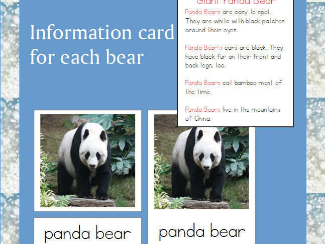 Bears - Montessori 3-Part Cards